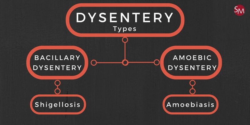 Holiday dysentery types